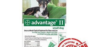 Understanding the history of Advantage ii and its benefits for pets