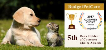 BudgetPetCare – 5th Rank Holder of Customer Choice Awards