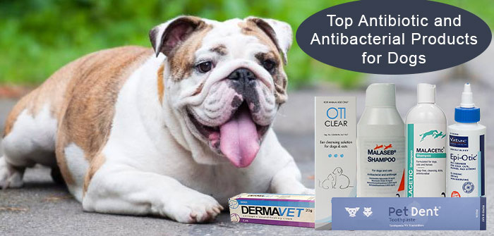 antibiotic and Antibactorial treatment for dogs