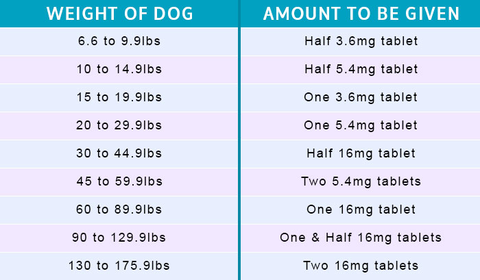 Apoquel for Dogs | BudgetPetCare