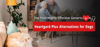 Best Generic Heartgard Plus treatments Available in Market for Dogs