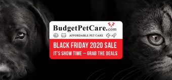 BudgetPetCare Black Friday 2020 Sale – It's Show Time – Grab The Deals