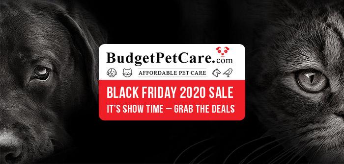 https://www.budgetpetcare.com