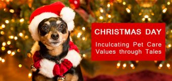 Christmas Day- Inculcating Pet Care Values through Tales