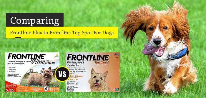 Frontline Plus v/s Frontline Top Spot for Dogs