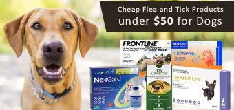 Cheap Flea and Tick Products under $50 for Dogs