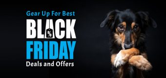 Gear Up For Best Black Friday Deals and Offers