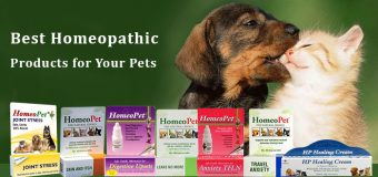 Best Homeopathic Products for Your Pets