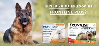 Is Nexgard as good as Frontline Plus?