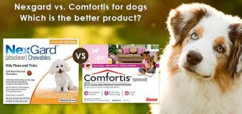 Nexgard vs. Comfortis for dogs: Which is the better product?