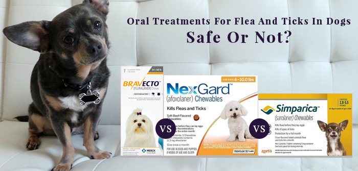 Oral Treatments For Flea And Ticks In Dogs