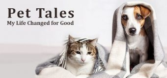 PET TALES: My Life Changed for Good