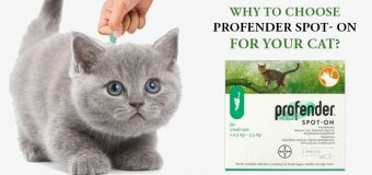 Why To Choose Profender Spot- On For Your Cat?