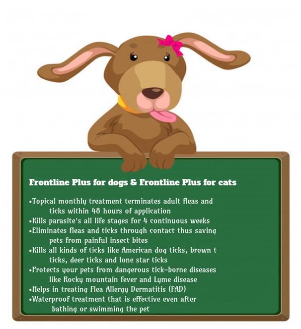 fronline-plus-mrs-fluffy