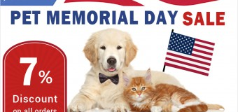 Sale on Budgetpetcare- 7% Discounts This National Pet Memorial Day