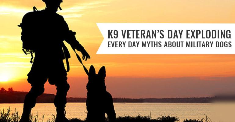 K9-Veteran's-Day