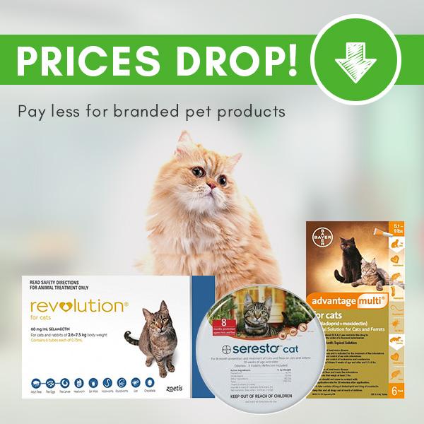 Budgetpetare-Cat-Price-Drop