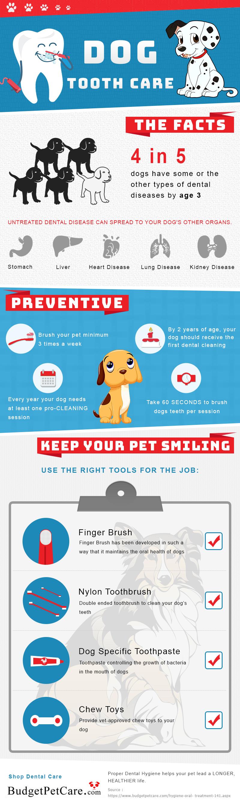 dog dental health care tips during pet dental health month