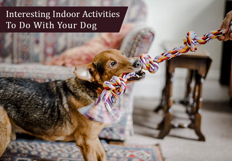 indoor- activities