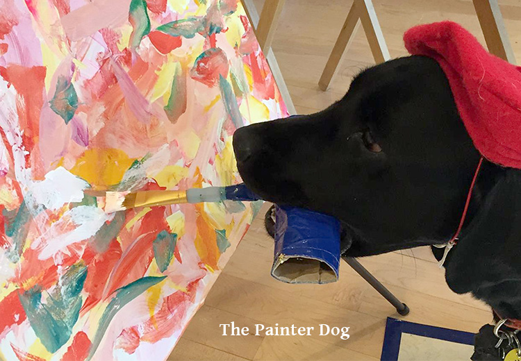 the painter dog